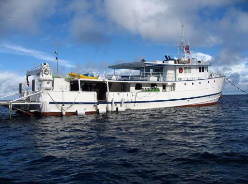 Photos de la croisière plongée à Cocos