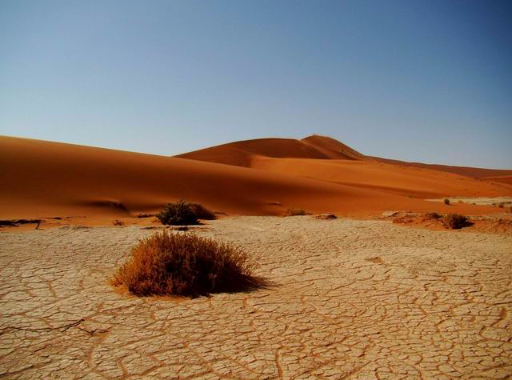 Photos des déserts.